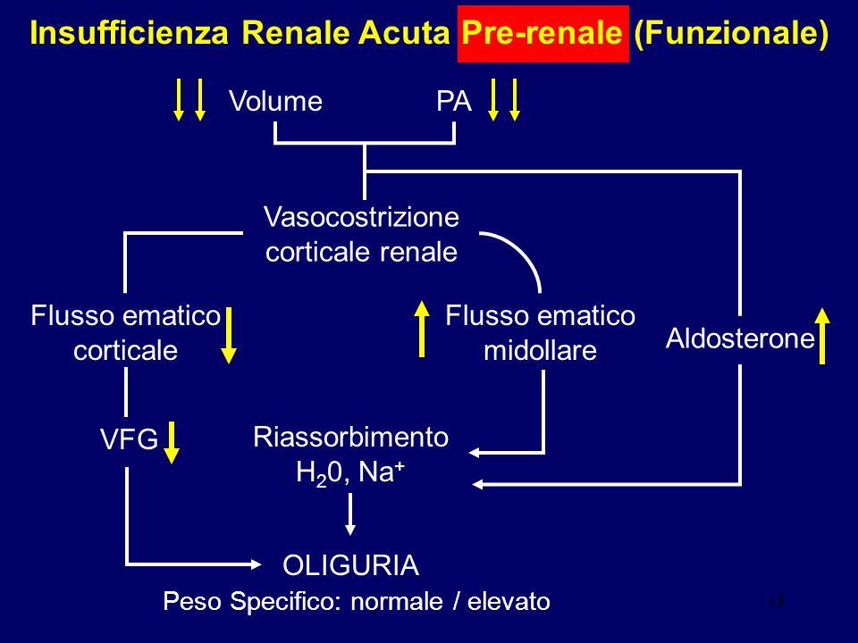18 Insufficienza Renale Acuta Pre-renale (Funzionale) VolumePA Vasocostrizione corticale renale Flusso ematico corticale Flusso ematico midollare VFG