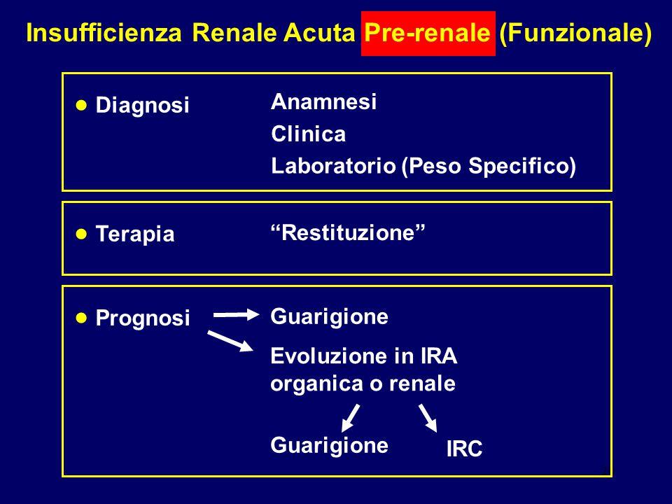 20 Insufficienza Renale Acuta Pre-renale (Funzionale) Diagnosi Anamnesi Clinica Laboratorio (Peso Specifico) Prognosi Guarigione Evoluzione in IRA org
