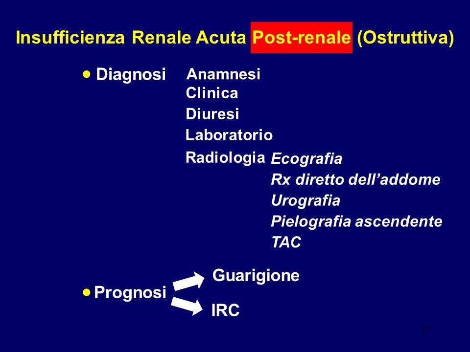 27 Insufficienza Renale Acuta Post-renale (Ostruttiva) Clinica Diuresi Diagnosi Anamnesi Laboratorio Radiologia Ecografia Rx diretto dell'addome Urogr