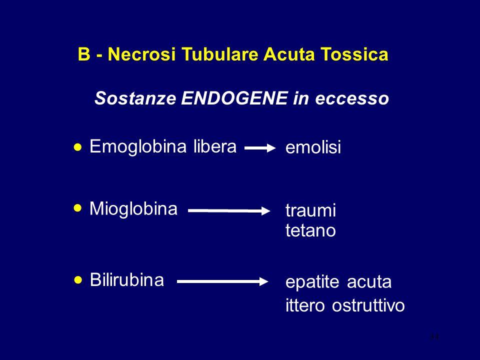 34 B - Necrosi Tubulare Acuta Tossica Sostanze ENDOGENE in eccesso Emoglobina libera emolisi Mioglobina traumi tetano Bilirubina epatite acuta ittero