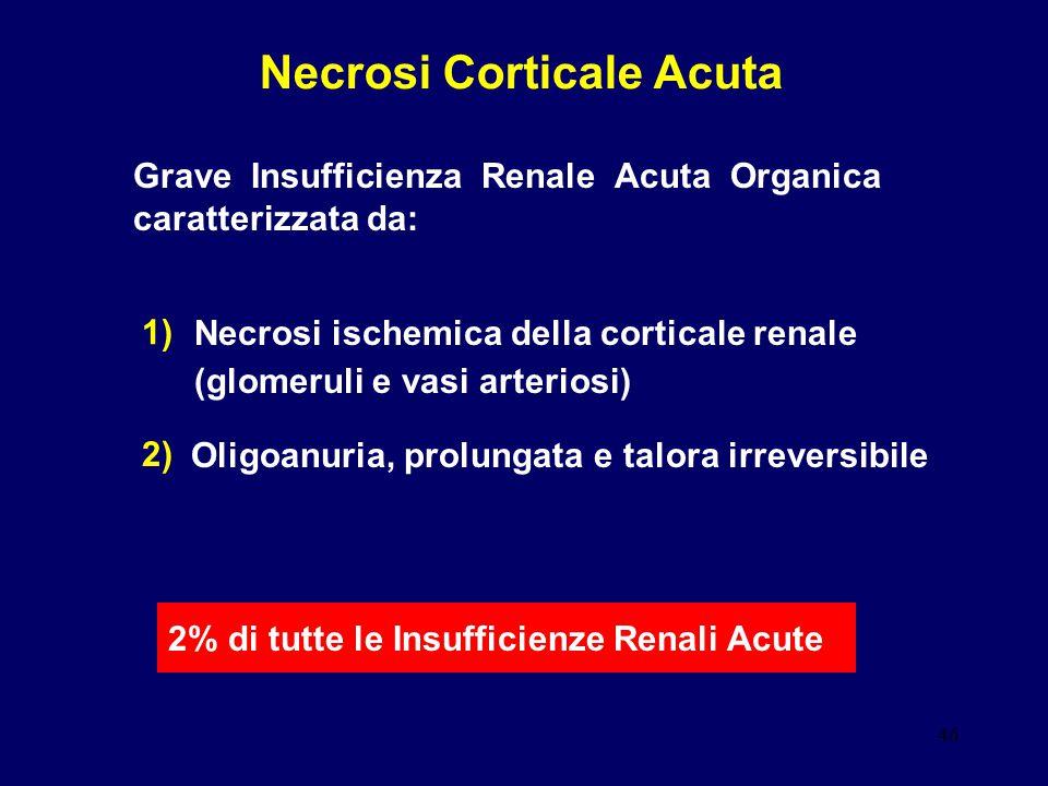 46 Necrosi Corticale Acuta Grave Insufficienza Renale Acuta Organica caratterizzata da: 1) 2) 2% di tutte le Insufficienze Renali Acute Necrosi ischem