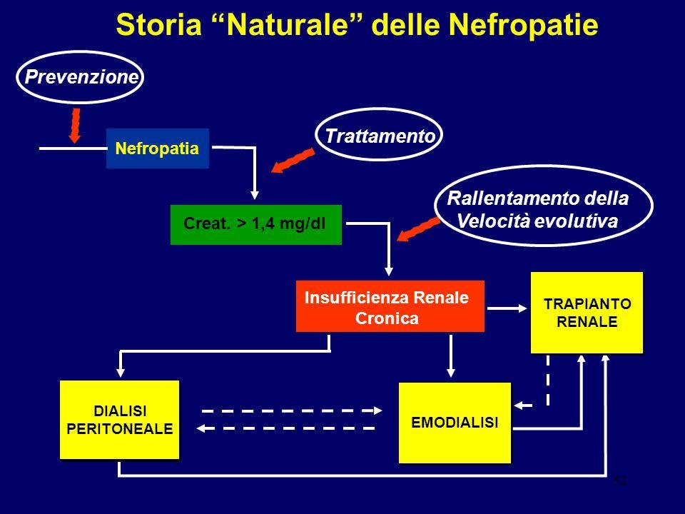 """52 Nefropatia Creat. > 1,4 mg/dl Insufficienza Renale Cronica Storia """"Naturale"""" delle Nefropatie DIALISI PERITONEALE EMODIALISI TRAPIANTO RENALE Tratt"""