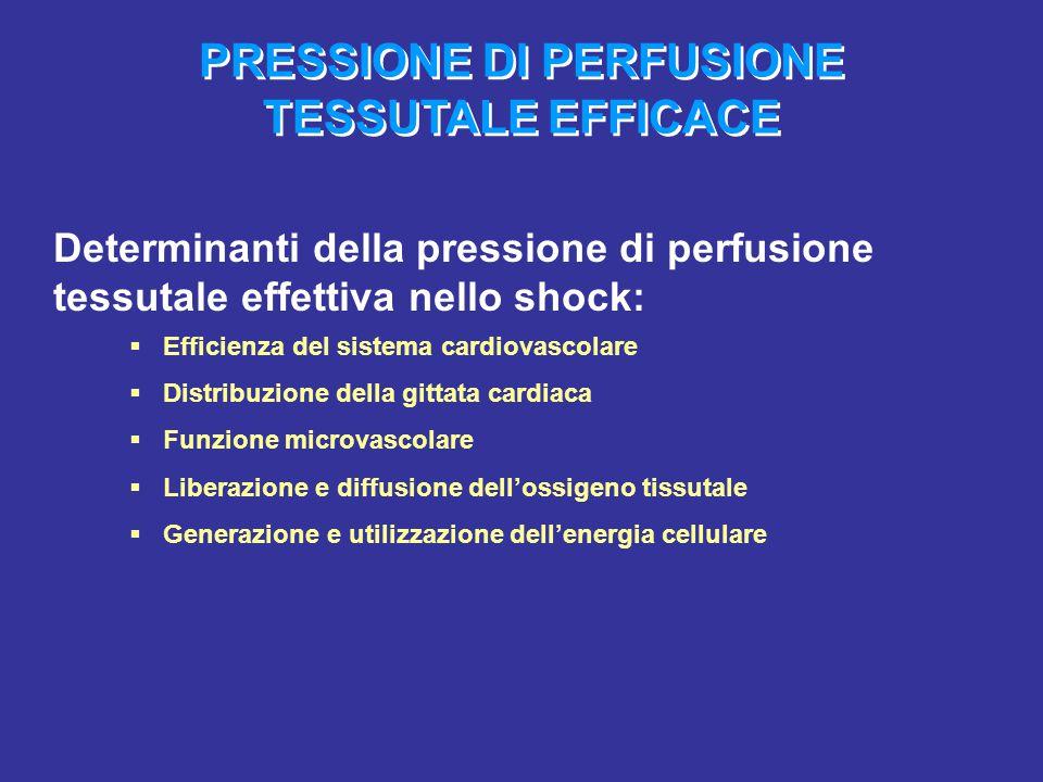 PRESSIONE DI PERFUSIONE TESSUTALE EFFICACE Determinanti della pressione di perfusione tessutale effettiva nello shock:  Efficienza del sistema cardio