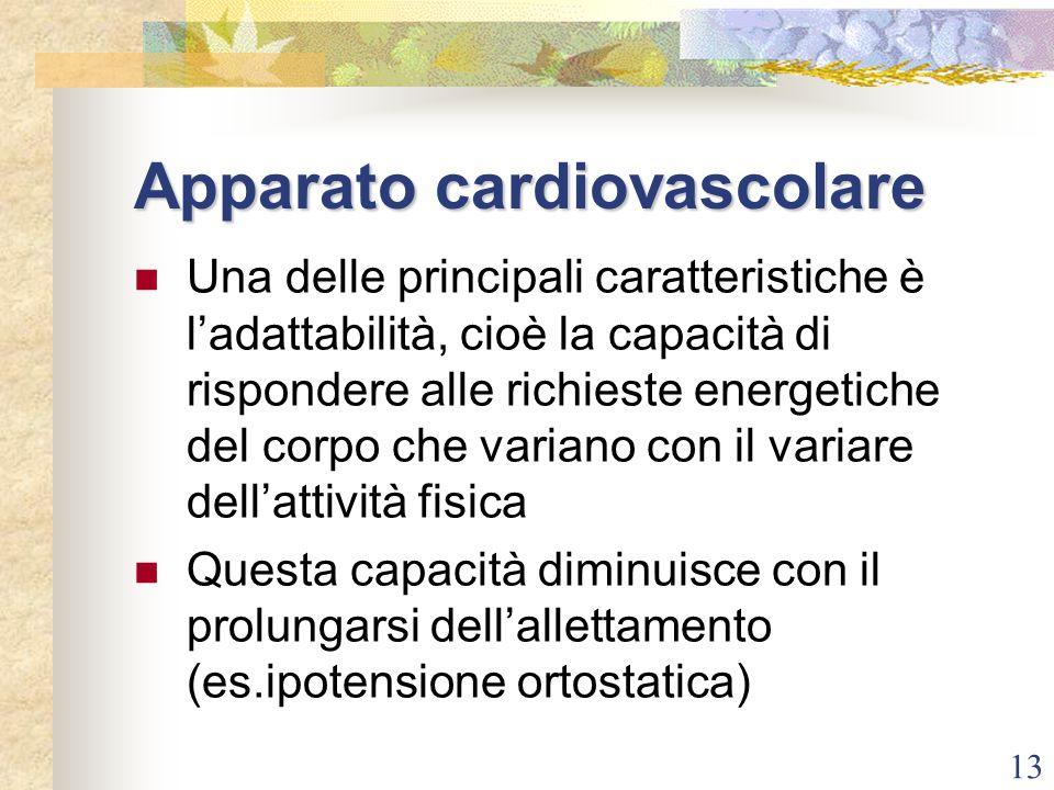 13 Apparato cardiovascolare Una delle principali caratteristiche è l'adattabilità, cioè la capacità di rispondere alle richieste energetiche del corpo