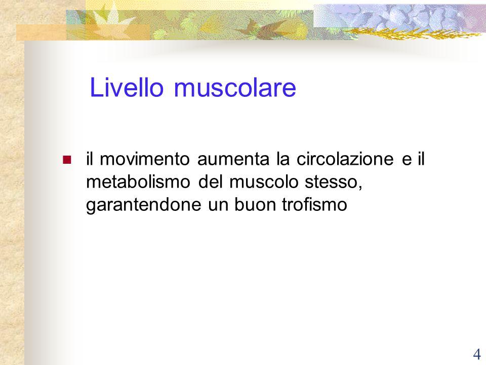 4 Livello muscolare il movimento aumenta la circolazione e il metabolismo del muscolo stesso, garantendone un buon trofismo
