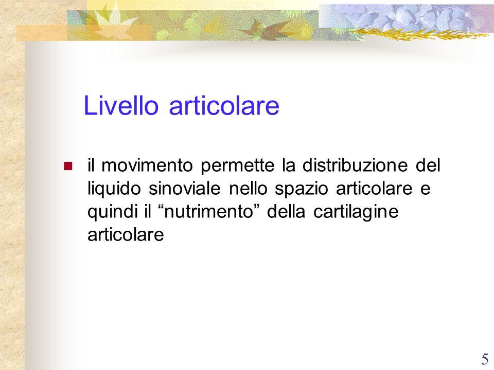 """5 Livello articolare il movimento permette la distribuzione del liquido sinoviale nello spazio articolare e quindi il """"nutrimento"""" della cartilagine a"""