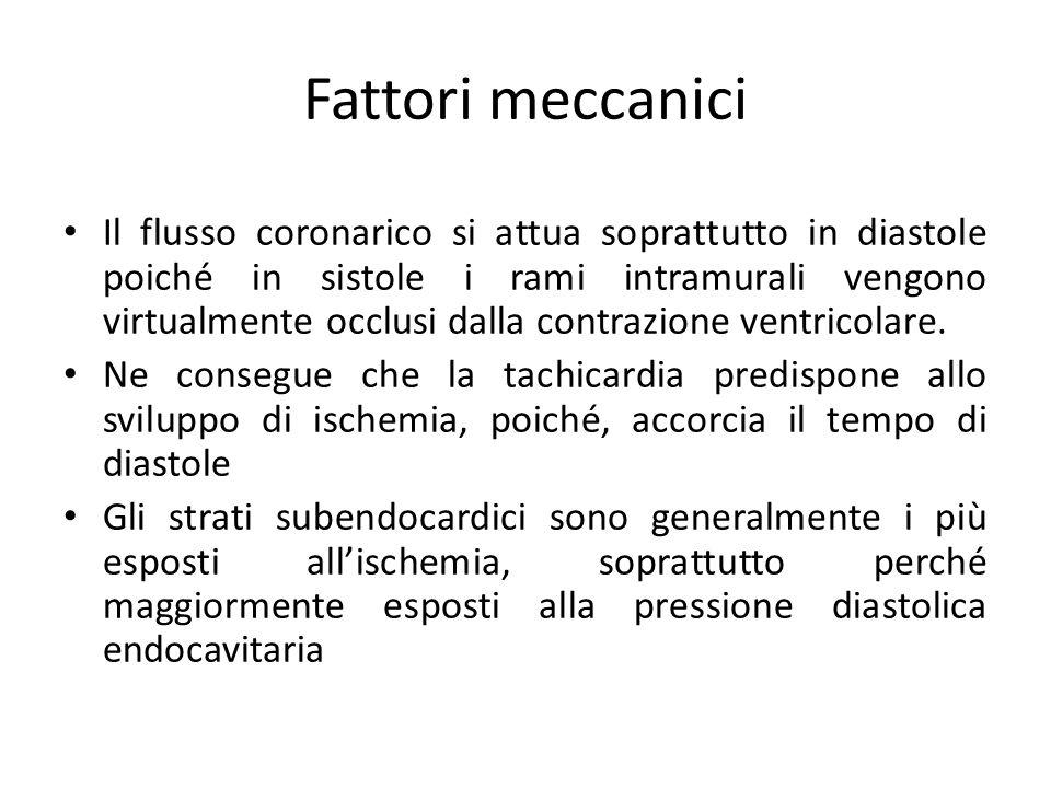Fattori meccanici Il flusso coronarico si attua soprattutto in diastole poiché in sistole i rami intramurali vengono virtualmente occlusi dalla contra