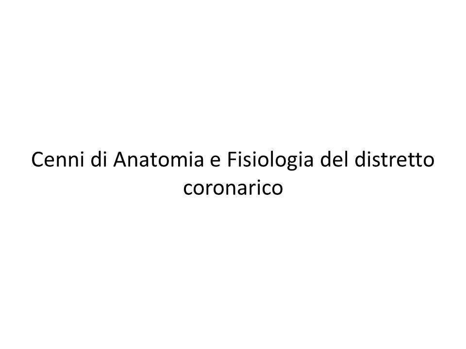 Riduzione del flusso coronarico In caso di aumento delle richieste metaboliche, il circolo coronarico non è più in grado di far fronte alle richieste con comparsa di ischemia.