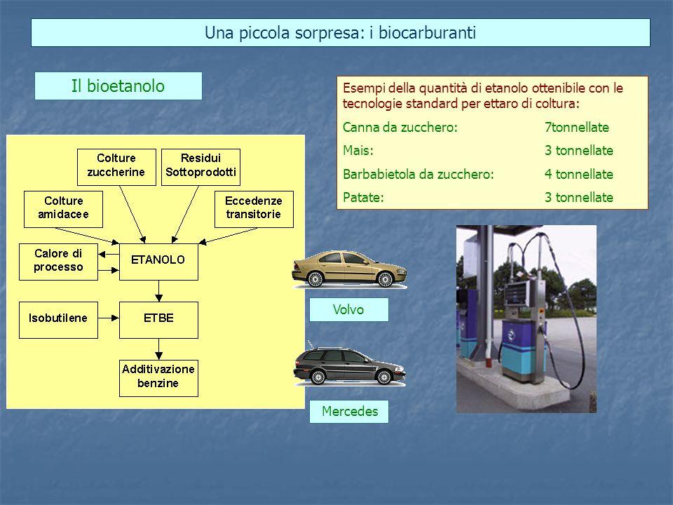 Una piccola sorpresa: i biocarburanti Esempi della quantità di etanolo ottenibile con le tecnologie standard per ettaro di coltura: Canna da zucchero:7tonnellate Mais:3 tonnellate Barbabietola da zucchero:4 tonnellate Patate:3 tonnellate Il bioetanolo Volvo Mercedes