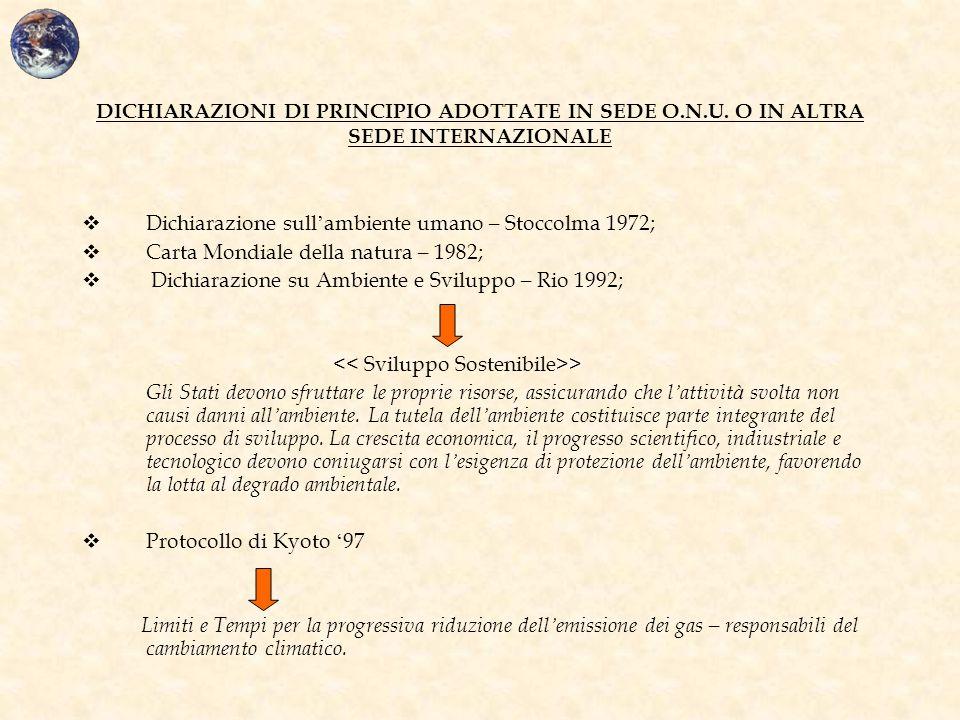 DICHIARAZIONI DI PRINCIPIO ADOTTATE IN SEDE O.N.U. O IN ALTRA SEDE INTERNAZIONALE  Dichiarazione sull ' ambiente umano – Stoccolma 1972;  Carta Mond