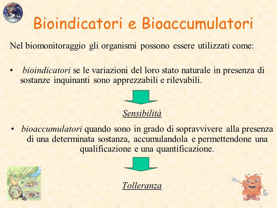 Bioindicatori e Bioaccumulatori Nel biomonitoraggio gli organismi possono essere utilizzati come: bioindicatori se le variazioni del loro stato natura