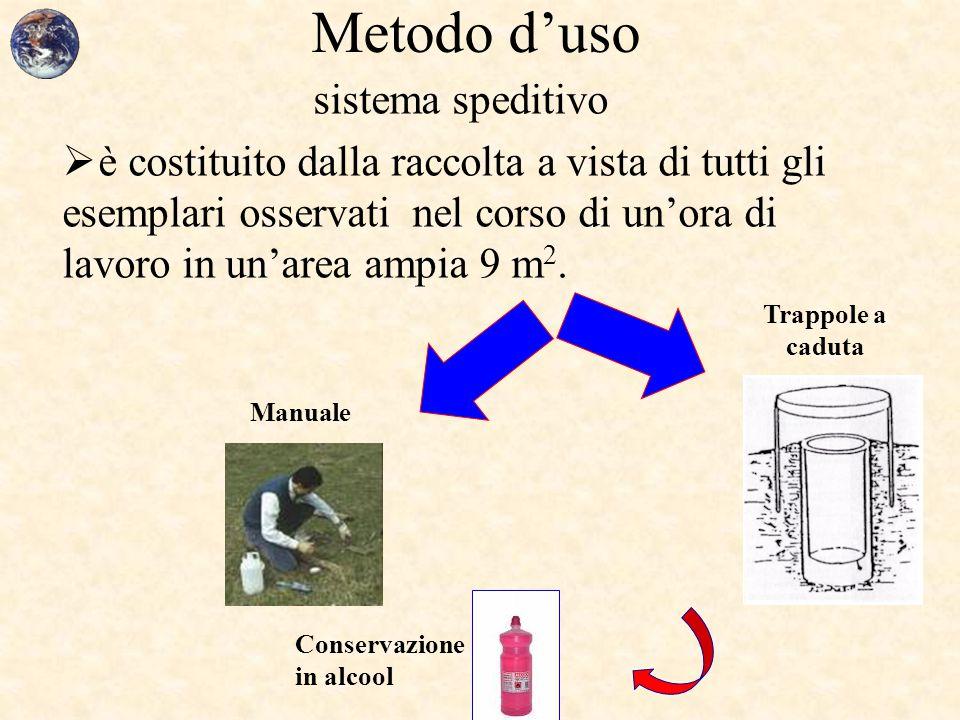 Metodo d'uso sistema speditivo  è costituito dalla raccolta a vista di tutti gli esemplari osservati nel corso di un'ora di lavoro in un'area ampia 9