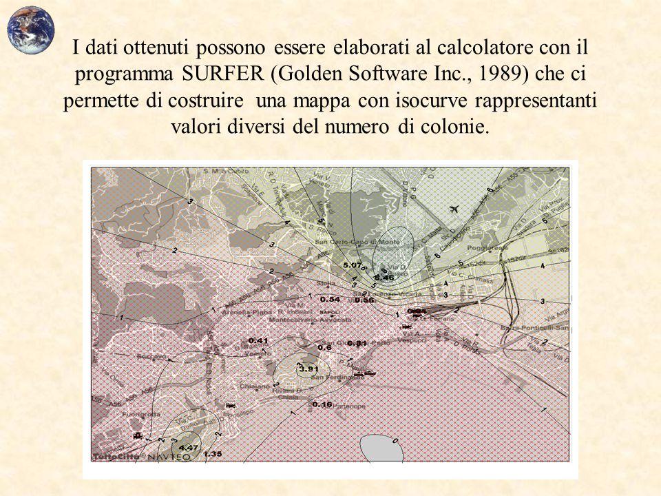 I dati ottenuti possono essere elaborati al calcolatore con il programma SURFER (Golden Software Inc., 1989) che ci permette di costruire una mappa co