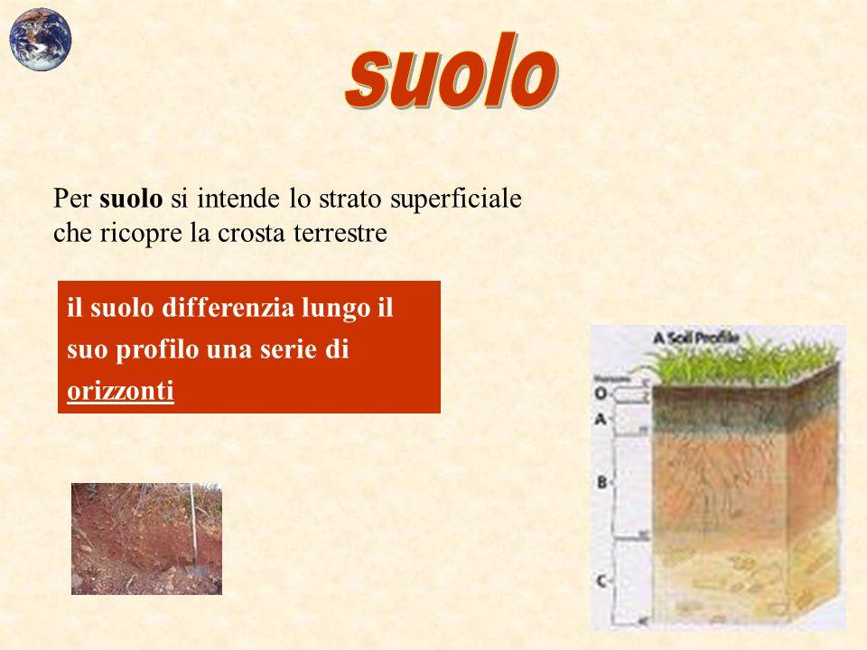 Per suolo si intende lo strato superficiale che ricopre la crosta terrestre il suolo differenzia lungo il suo profilo una serie di orizzonti