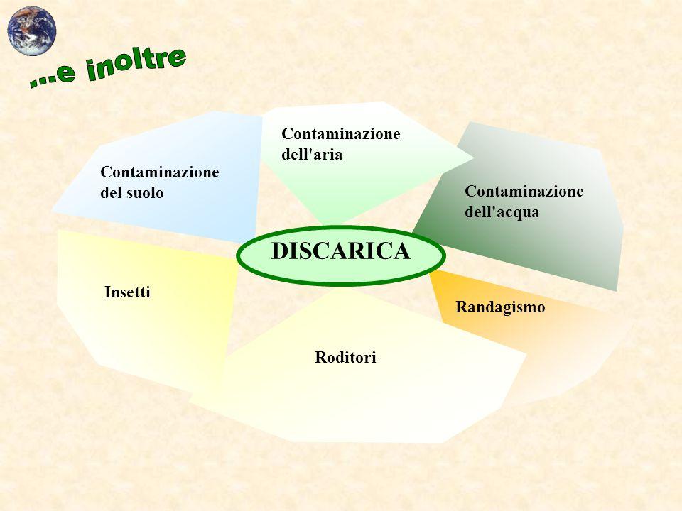 DISCARICA Contaminazione del suolo Insetti Randagismo Roditori Contaminazione dell'aria Contaminazione dell'acqua