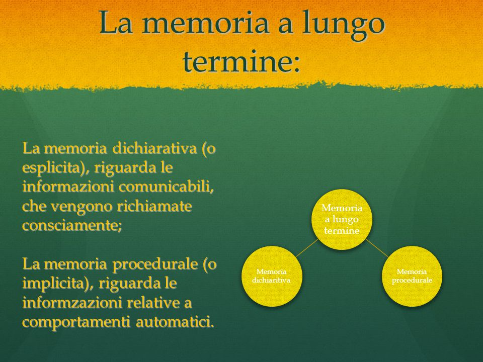 La memoria a lungo termine: Memoria a lungo termine Memoria dichiaritiva Memoria procedurale La memoria dichiarativa (o esplicita), riguarda le inform