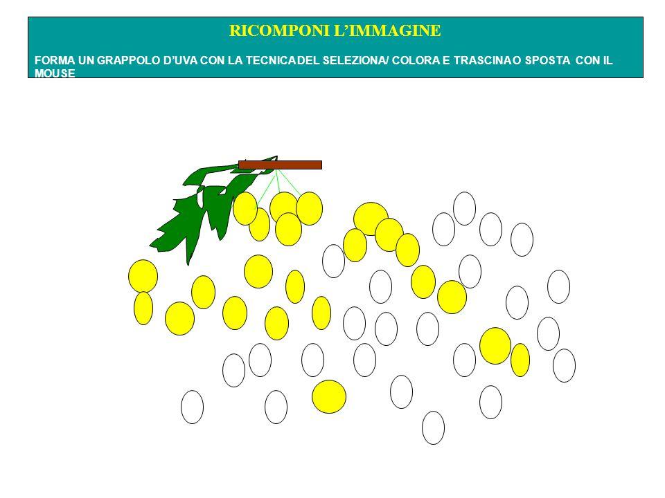 RICOMPONI L'IMMAGINE FORMA UN GRAPPOLO D'UVA CON LA TECNICA DEL SELEZIONA/ COLORA E TRASCINA O SPOSTA CON IL MOUSE