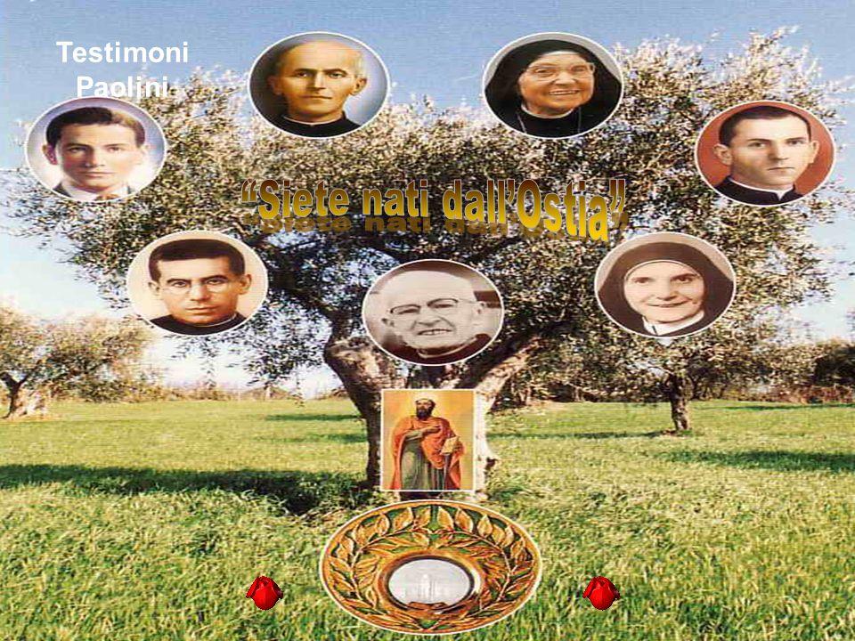 Testimoni Paolini