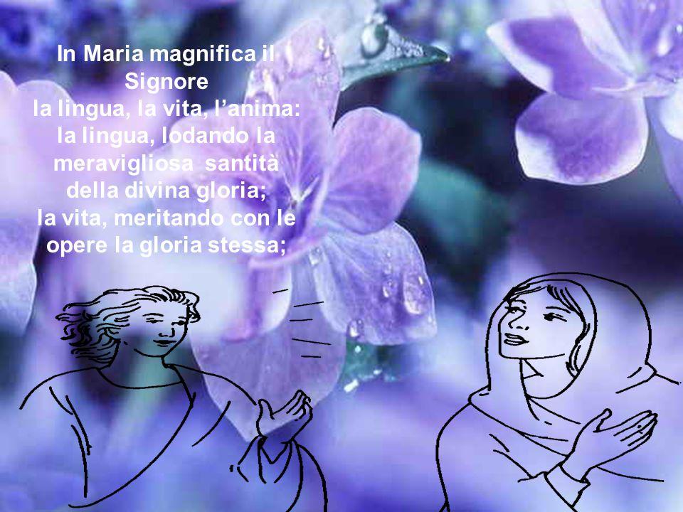 L'anima mia magnifica il Signore, dice Maria, non solo con la bocca lo magnifica, non solo con l'integrità del corpo, ma per il carattere unico del su