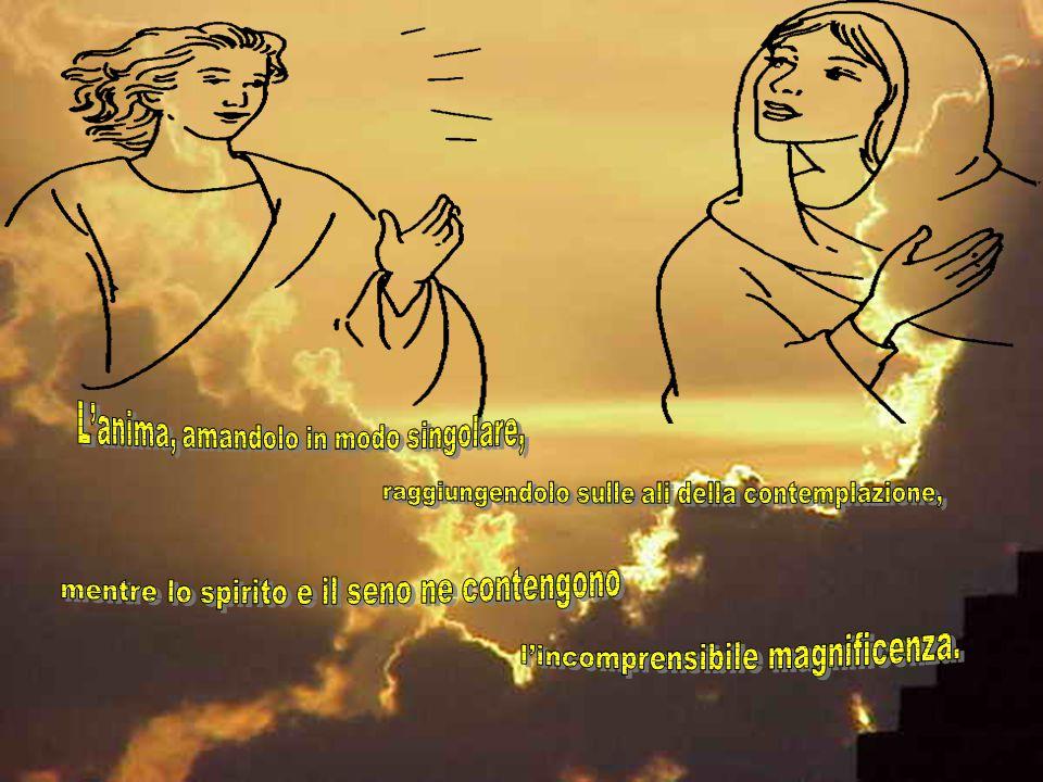 In Maria magnifica il Signore la lingua, la vita, l'anima: la lingua, lodando la meravigliosa santità della divina gloria; la vita, meritando con le o