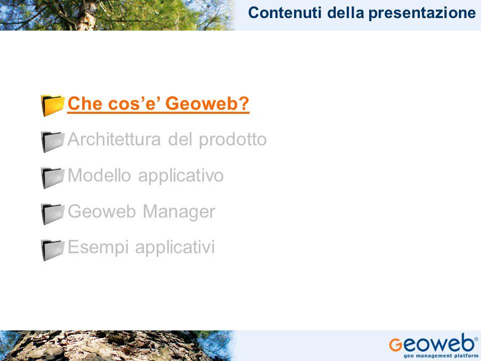 TITOLO PRESENTAZIONE Che cos'e' Geoweb.