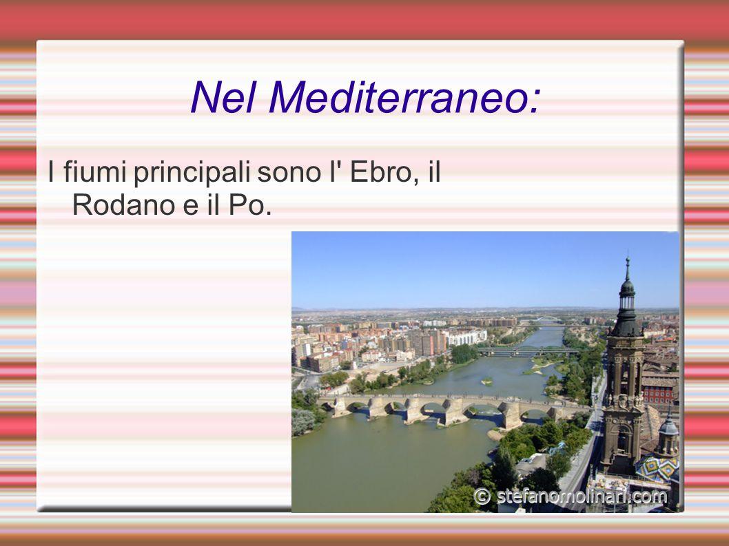 Nel Mediterraneo: I fiumi principali sono l' Ebro, il Rodano e il Po.