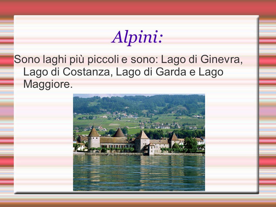 Alpini: Sono laghi più piccoli e sono: Lago di Ginevra, Lago di Costanza, Lago di Garda e Lago Maggiore.