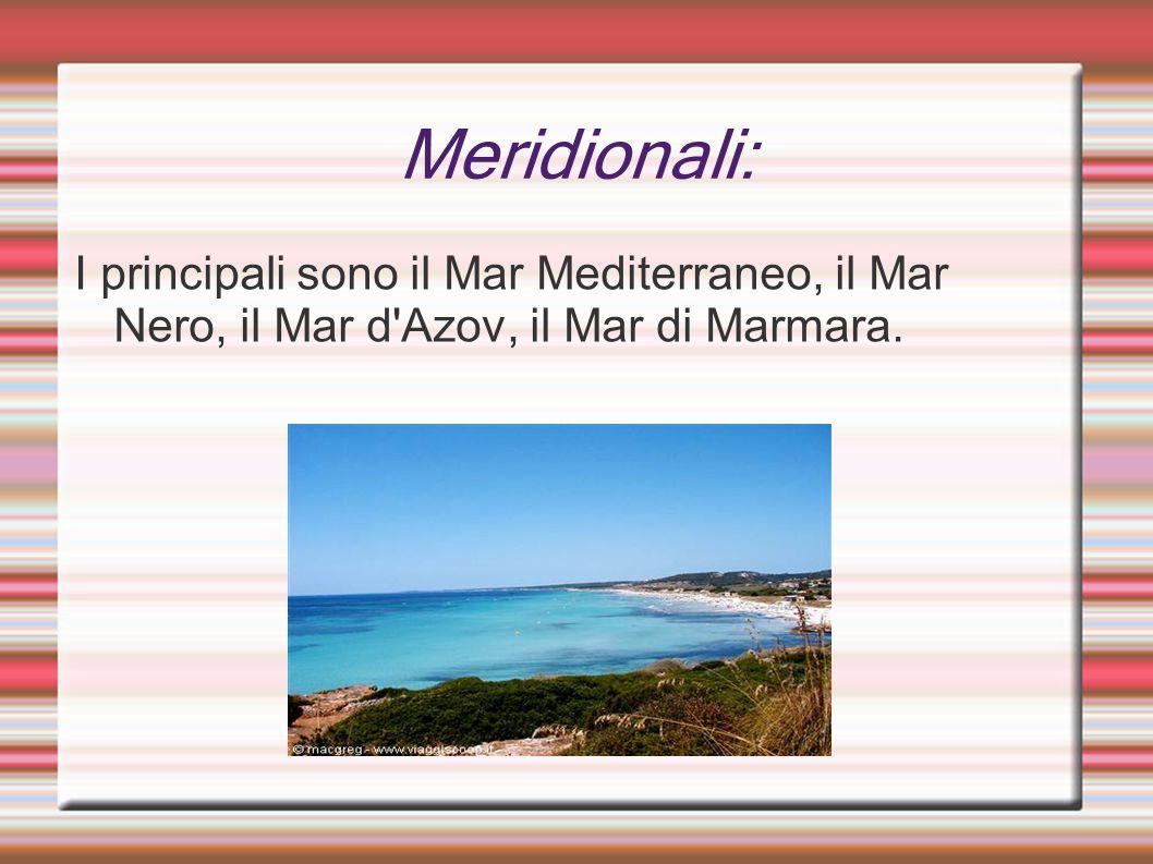 Meridionali: I principali sono il Mar Mediterraneo, il Mar Nero, il Mar d'Azov, il Mar di Marmara.