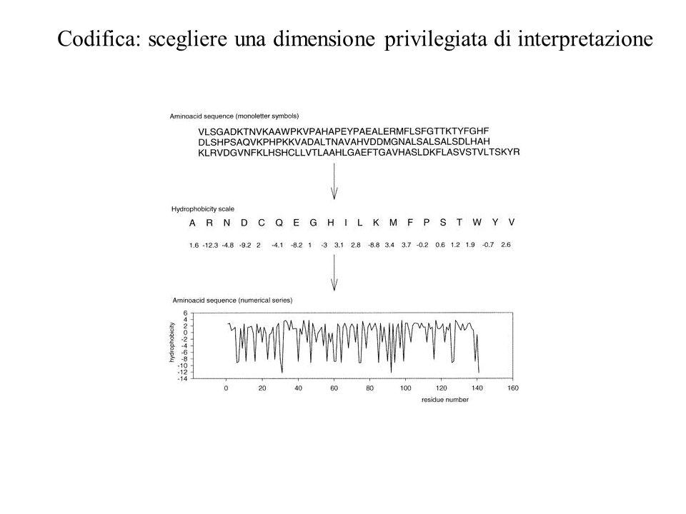 La distribuzione di idrofobicità della proteina P53, la mancanza di un ordine prestabilito nella distribuzionespaziale di idrofobicità (elevata entropia), consente alla proteina di veicolare grandi quantità di informazione