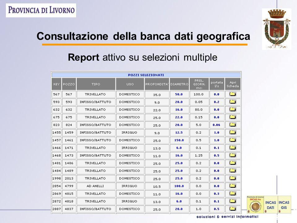 Consultazione della banca dati geografica Report attivo su selezioni multiple