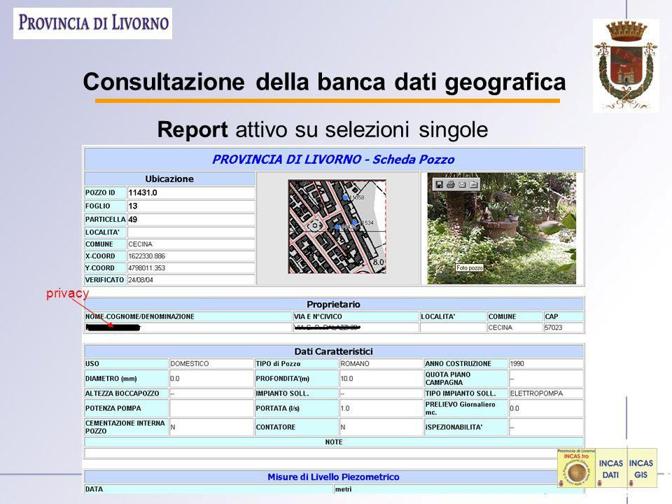 Consultazione della banca dati geografica Report attivo su selezioni singole privacy