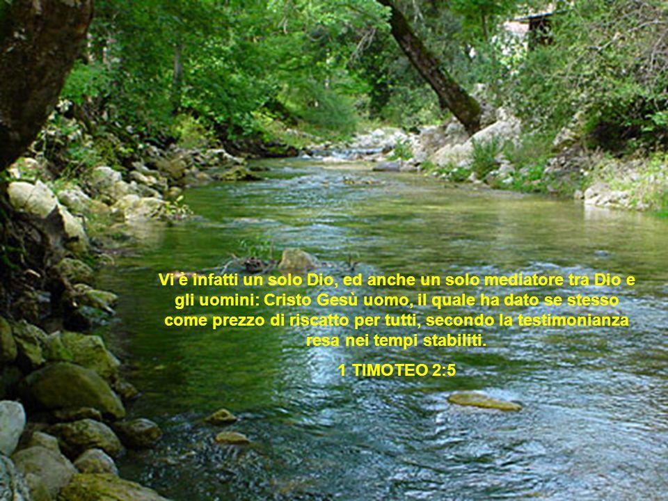 Vi è infatti un solo Dio, ed anche un solo mediatore tra Dio e gli uomini: Cristo Gesù uomo, il quale ha dato se stesso come prezzo di riscatto per tu