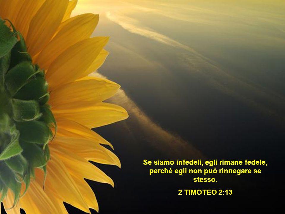 Se siamo infedeli, egli rimane fedele, perché egli non può rinnegare se stesso. 2 TIMOTEO 2:13