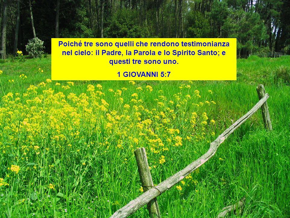 Poiché tre sono quelli che rendono testimonianza nel cielo: il Padre, la Parola e lo Spirito Santo; e questi tre sono uno. 1 GIOVANNI 5:7