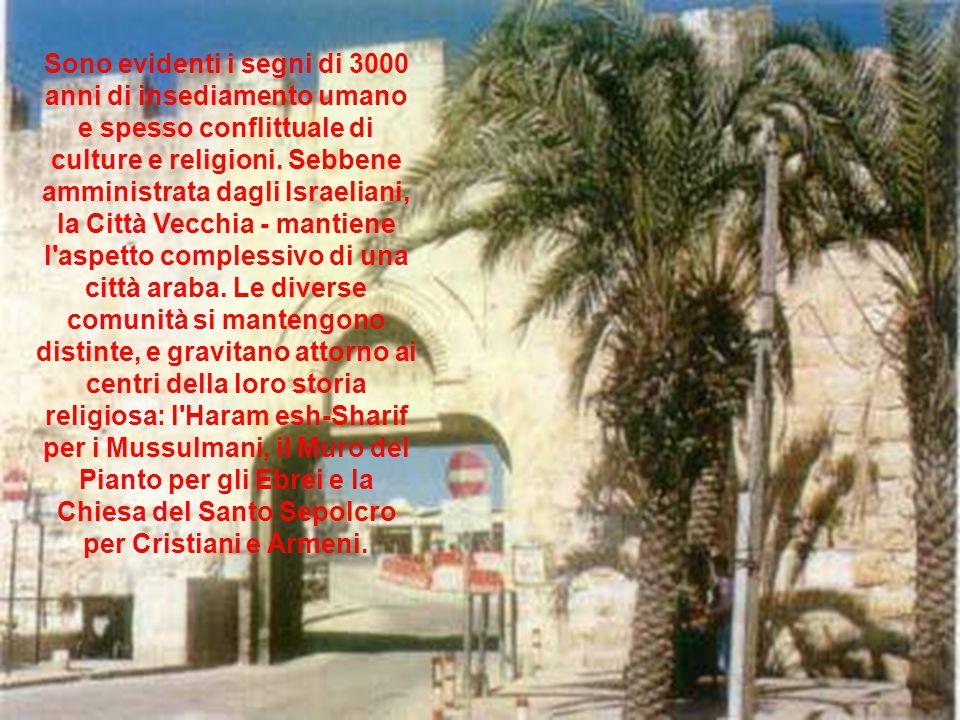 Sono evidenti i segni di 3000 anni di insediamento umano e spesso conflittuale di culture e religioni.