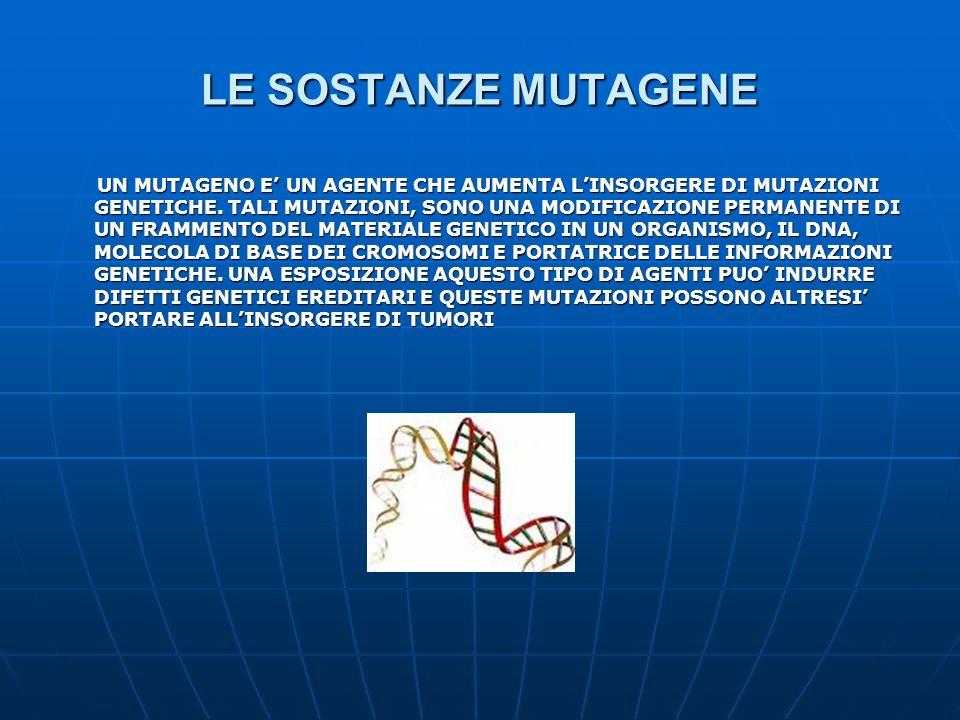 LE SOSTANZE MUTAGENE UN MUTAGENO E' UN AGENTE CHE AUMENTA L'INSORGERE DI MUTAZIONI GENETICHE. TALI MUTAZIONI, SONO UNA MODIFICAZIONE PERMANENTE DI UN