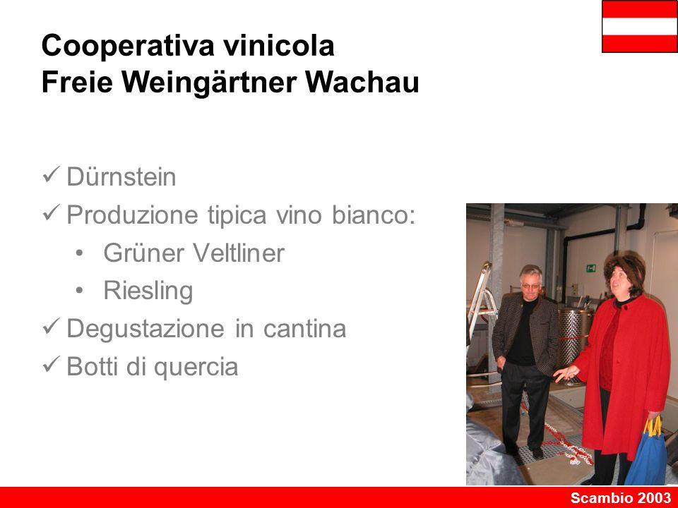 Scambio 2003 Cooperativa vinicola Freie Weingärtner Wachau Dürnstein Produzione tipica vino bianco: Grüner Veltliner Riesling Degustazione in cantina