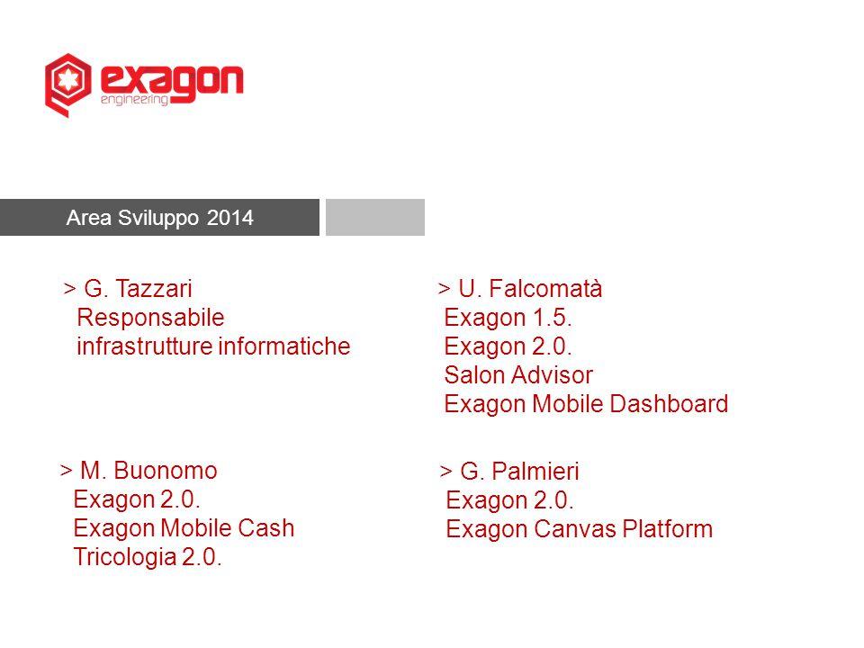 Area Sviluppo 2014 > M. Buonomo Exagon 2.0. Exagon Mobile Cash Tricologia 2.0. > G. Palmieri Exagon 2.0. Exagon Canvas Platform > U. Falcomatà Exagon