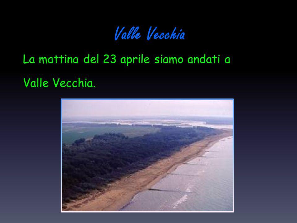 Valle Vecchia La mattina del 23 aprile siamo andati a Valle Vecchia.
