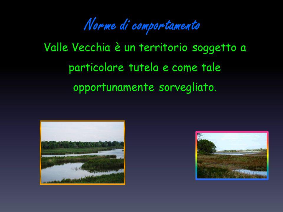 Norme di comportamento Valle Vecchia è un territorio soggetto a particolare tutela e come tale opportunamente sorvegliato.