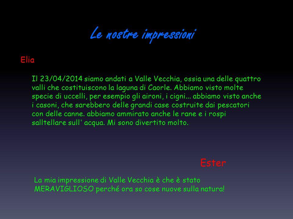 Le nostre impressioni Elia Il 23/04/2014 siamo andati a Valle Vecchia, ossia una delle quattro valli che costituiscono la laguna di Caorle. Abbiamo vi