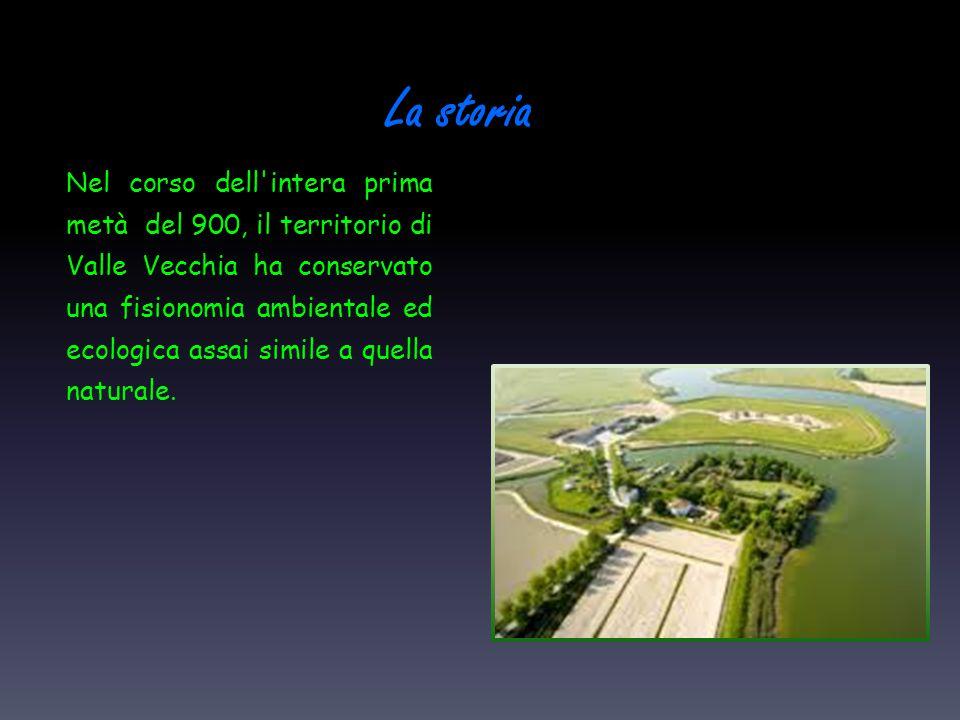 La storia Nel corso dell'intera prima metà del 900, il territorio di Valle Vecchia ha conservato una fisionomia ambientale ed ecologica assai simile a