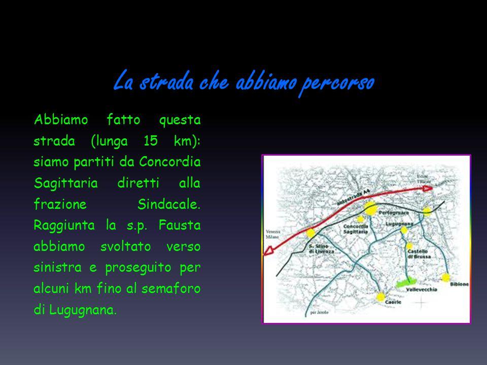 La strada che abbiamo percorso Abbiamo fatto questa strada (lunga 15 km): siamo partiti da Concordia Sagittaria diretti alla frazione Sindacale. Raggi