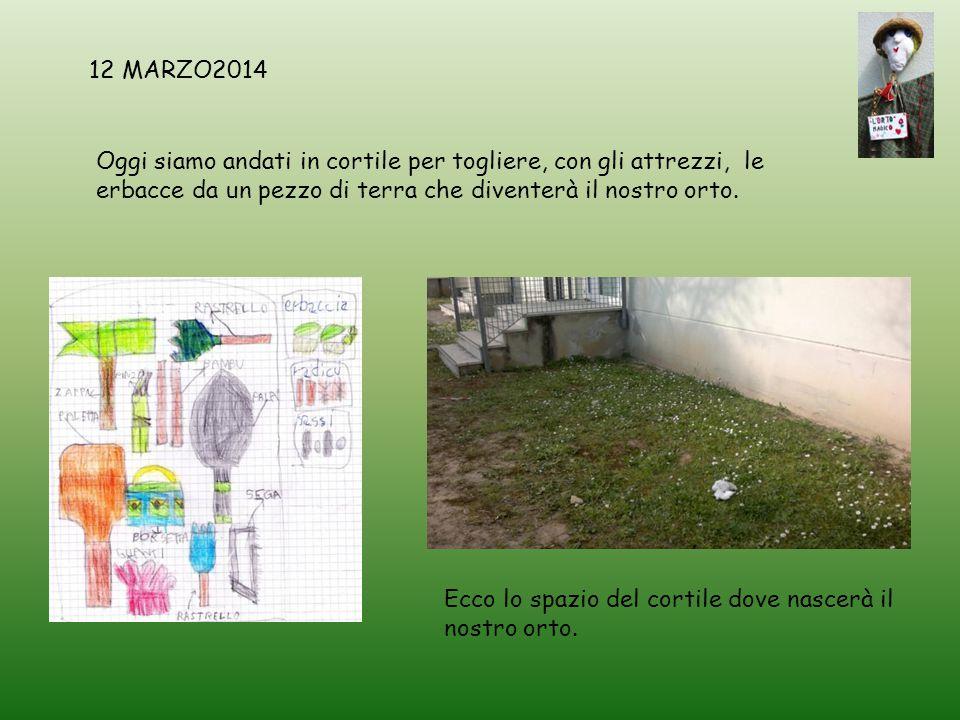 Oggi siamo andati in cortile per togliere, con gli attrezzi, le erbacce da un pezzo di terra che diventerà il nostro orto. 12 MARZO2014 Ecco lo spazio