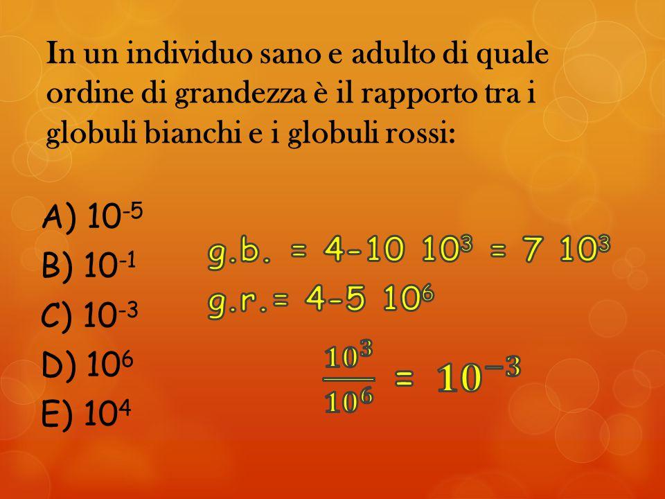 In un individuo sano e adulto di quale ordine di grandezza è il rapporto tra i globuli bianchi e i globuli rossi: A) 10 -5 B) 10 -1 C) 10 -3 D) 10 6 E) 10 4