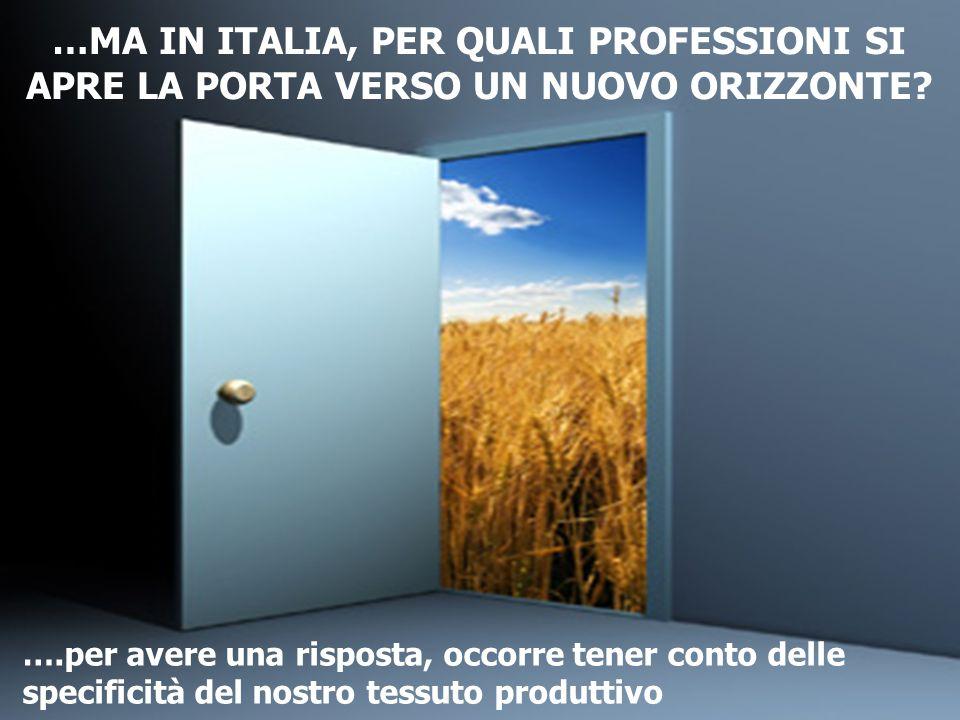 4 …MA IN ITALIA, PER QUALI PROFESSIONI SI APRE LA PORTA VERSO UN NUOVO ORIZZONTE? ….per avere una risposta, occorre tener conto delle specificità del