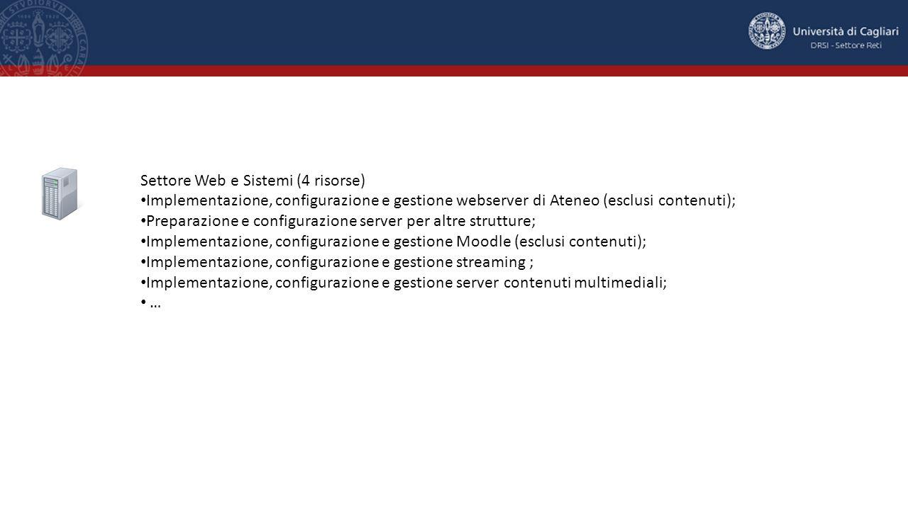 Settore Web e Sistemi (4 risorse) Implementazione, configurazione e gestione webserver di Ateneo (esclusi contenuti); Preparazione e configurazione se