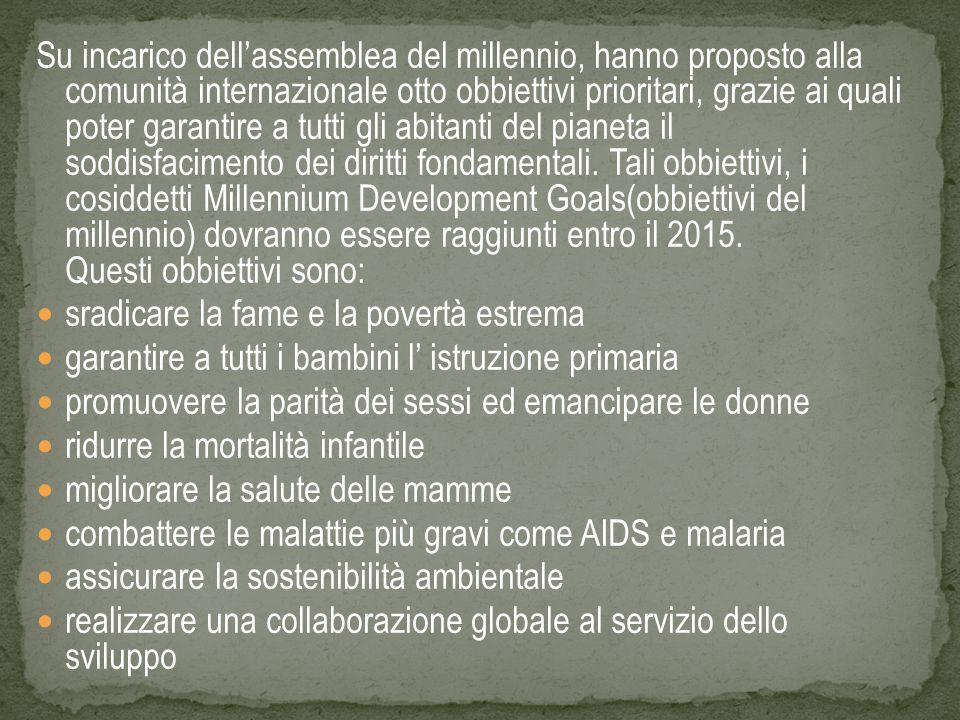 Su incarico dell'assemblea del millennio, hanno proposto alla comunità internazionale otto obbiettivi prioritari, grazie ai quali poter garantire a tu