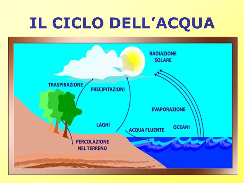 Durezza La durezza dell acqua indica il contenuto di sali (soprattutto alcalini), quali calcio e magnesio (Ca e Mg - responsabili della formazione del calcare ) sotto forma di: cloruro di calcio (CaCl 2 ), solfato di calcio (CaSO 4 ), cloruro di magnesio (MgCl 2 ) e solfato magnesio (MgSO 4 ).