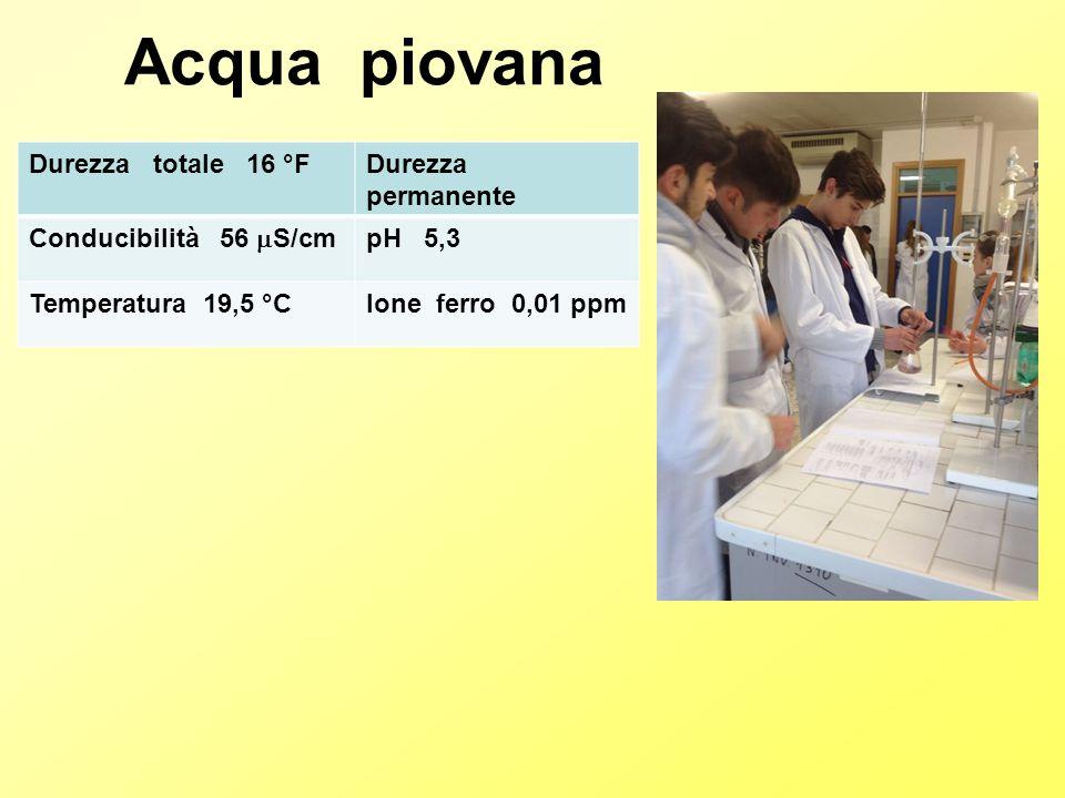 Durezza totale 16 °FDurezza permanente Conducibilità 56  S/cm pH 5,3 Temperatura 19,5 °CIone ferro 0,01 ppm Acqua piovana